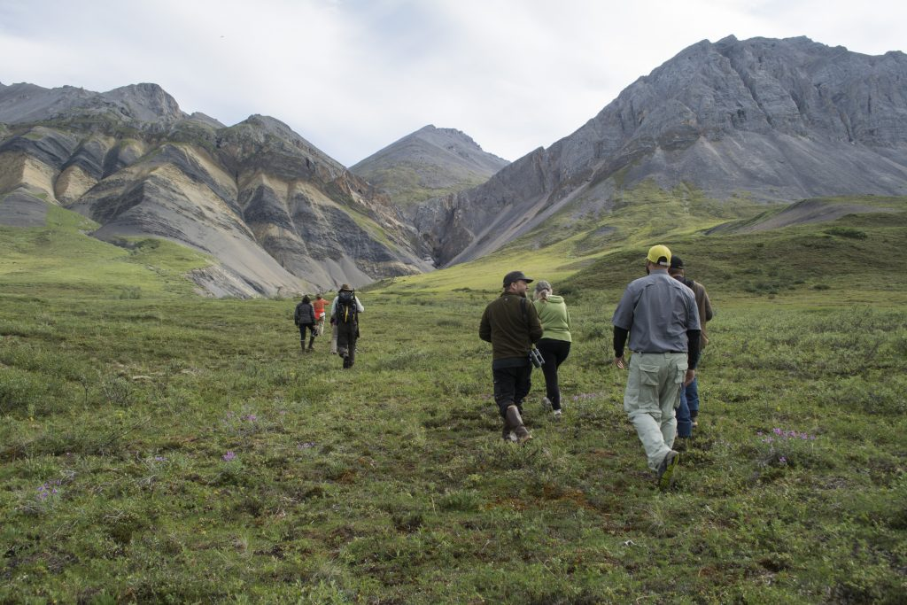 lclare_anwr_july2016-41